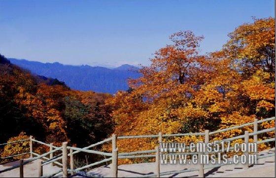 峨眉山的秋季风景