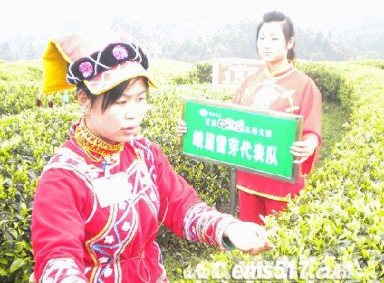 """首届""""峨眉山茶""""采茶制茶大赛"""