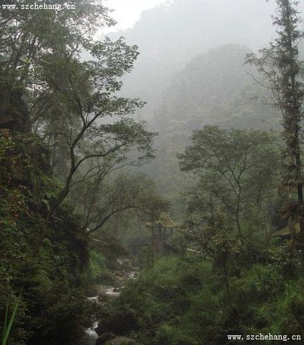 峨眉山自然生态猴区