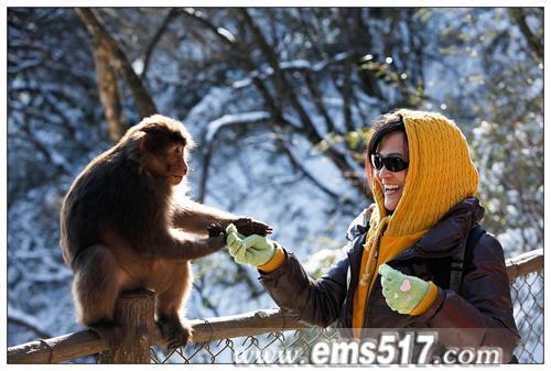 2011年峨眉山新年祈福暨冰雪养生之旅