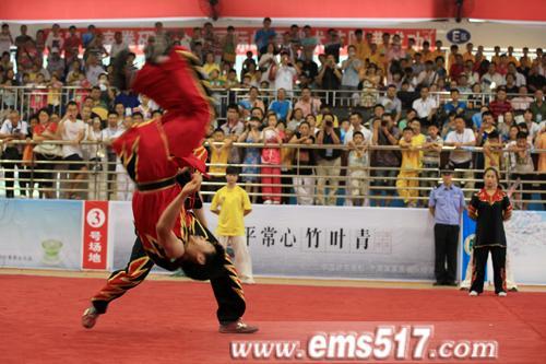 武术节开幕式现场精采的峨眉武术表演