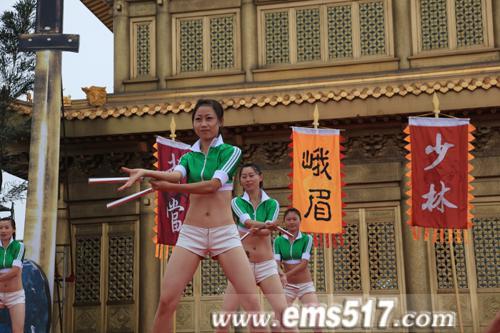2011中国四川国际峨眉武术节金顶论剑巅峰对决精彩现场