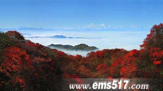 峨眉山秋季彩林