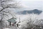 峨眉冬雪 ---张源.jpg